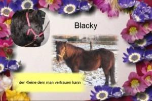 Blacky-300x199