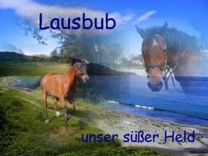 lausbub_2